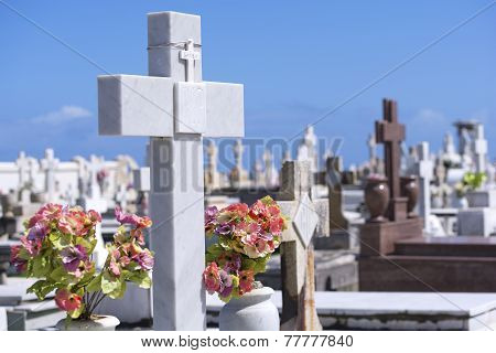 Christian Crosses In Cemetery