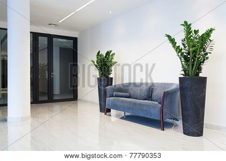 Hall With Comfortable Sofa