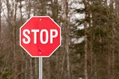 stock photo of octagon shape  - Closeup view of stop sign with trees in background