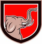 foto of tusks  - Illustration of an elephant head with tusks viewed from the side set inside shield crest on isolated background done in cartoon style - JPG