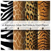 foto of animal footprint  - Animals Skin Pattern and Footprint Design Template - JPG