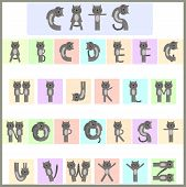 pic of animated cartoon  - alphabet of funny cartoon cats in multi - JPG