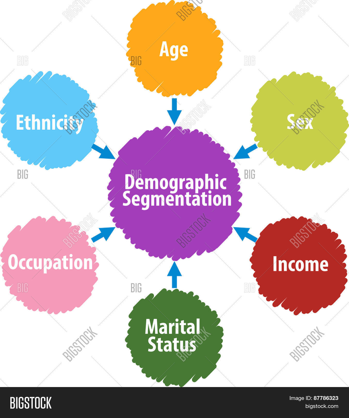 Demographic segmentation business diagram illustration Stock Photo ...