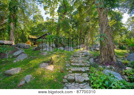 Tropical green garden with a pathway in Thailand