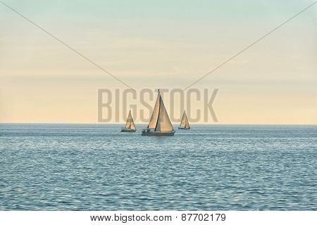 Sail of a sailing boat