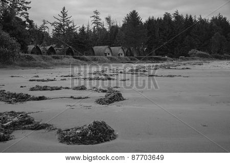 A beach with cabins
