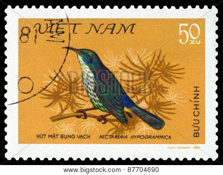 Vintage  Postage Stamp. Bird Nectarinia Hypogrammica.
