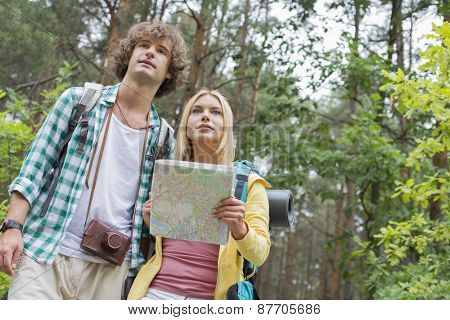 Low angle view of hiking couple with map in forest