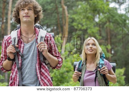 Young hiking couple looking away in forest