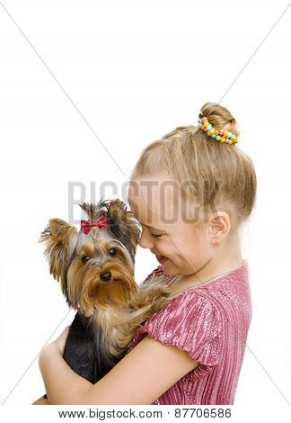 Girl Hug A Little Yorkshire Terrier Puppy