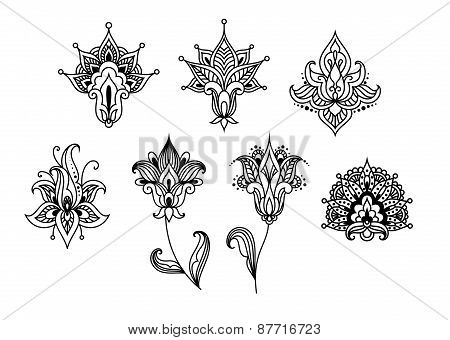 Abstract indian paisley floral design elements