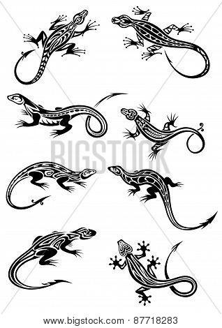 Lizard tattoos with tribal ornaments