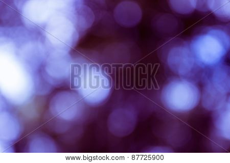 Natural Outdoors Bokeh Light Background, Blue Tone In Hilight And Purple Tone In Shadow