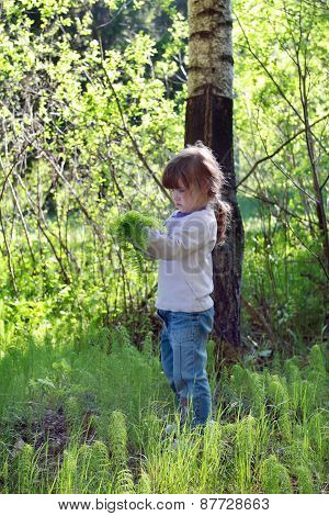 Cute Little Girl In Jeans Standing In Woods And Gather Herbs