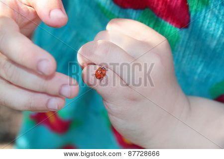 Close-up Of Ladybug On Finger Of Little Girl In Turquoise Dress