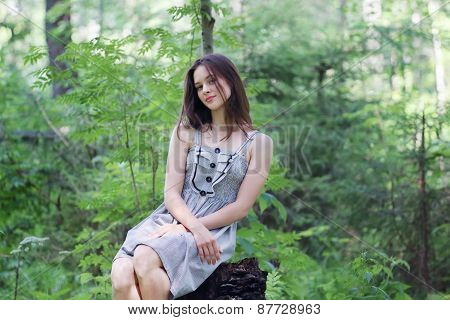 Beautiful Girl In Dress Sitting On Stump In Forest And Looking At Camera