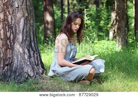 Beautiful Young Woman In Dress Sitting Under Tree On Grass And Reading Book