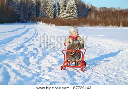 Little Boy Wearing Warm Jumpsuit Stands With Sled On Snow Near Forest At Winter