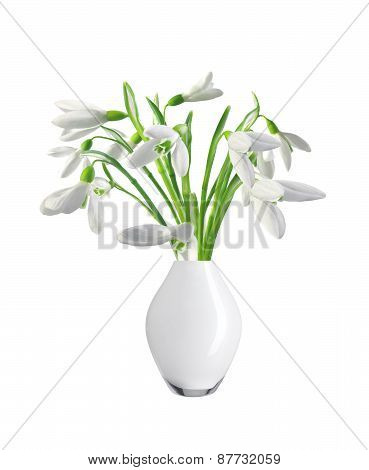 Spring Snowdrops In White Vase Isolated On White