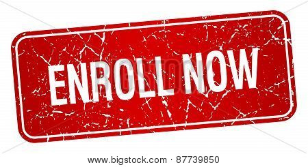 Enroll Now Red Square Grunge Textured Isolated Stamp