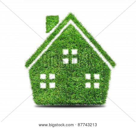Abstract Green Grass House Icon