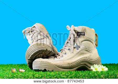 Hiking Shoes On Grass