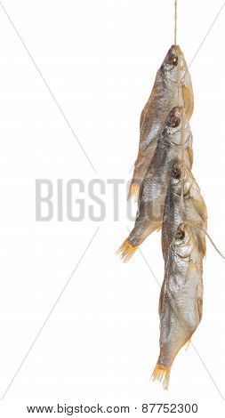 Smoked Fish On A Rope Vertically