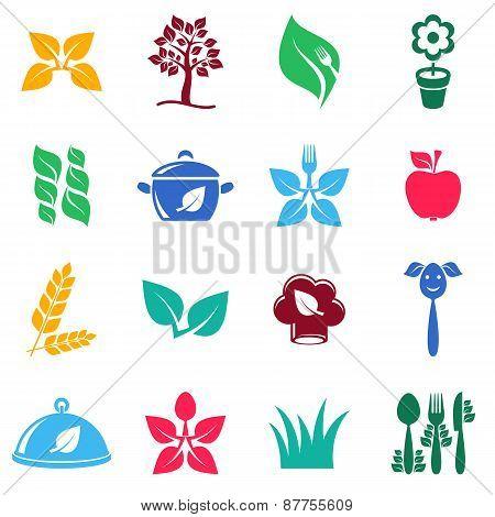 Vegetarian Organic Food Icons