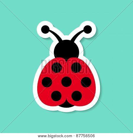 Seven Spot Ladybird Label