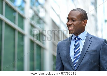 Successful Businessman At Outdoors