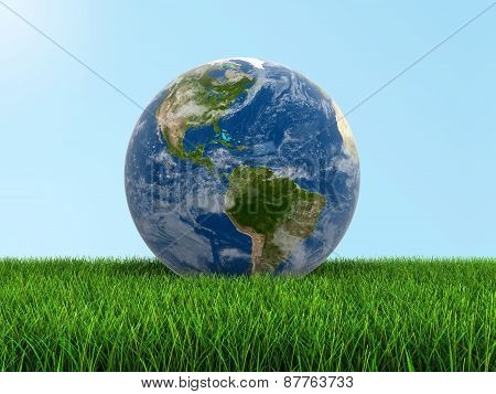 Globe on grass (clipping path included)