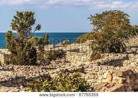 Ruins In Khersones