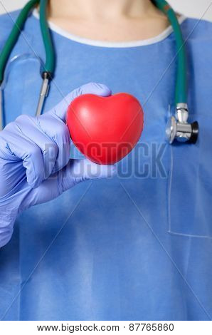 Heart In Surgeon's Hand