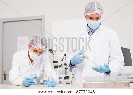 Scientists working with petri dish and test tube in laboratory