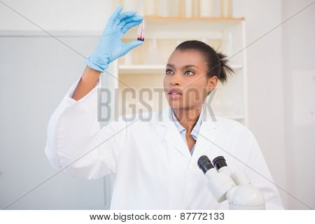 Scientist examining test tube in laboratory