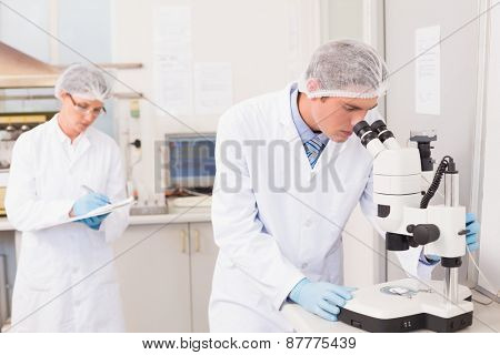 Scientist working attentively with microscope in laboratory