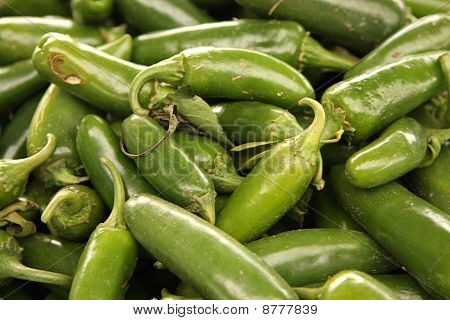 Green Chili Pepper Background
