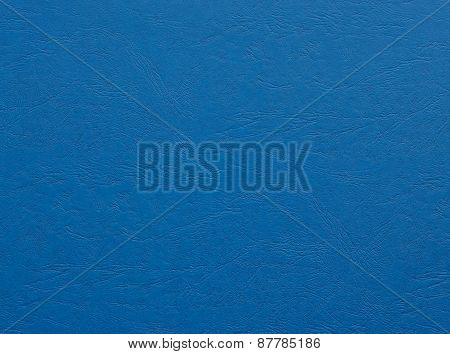 Paper (leather)