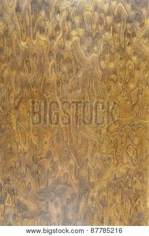 Beech Wooden Background