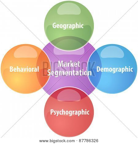 business strategy concept infographic diagram illustration of market segmentation