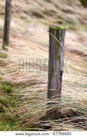 Elements Of Fence On The Beach, North Holland