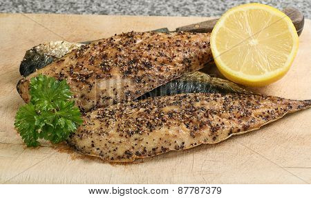 Peppered Mackerel