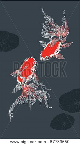 Two Red Golden Fish On Black Background Vector Vertical
