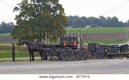 Amish Buggies & Wagons