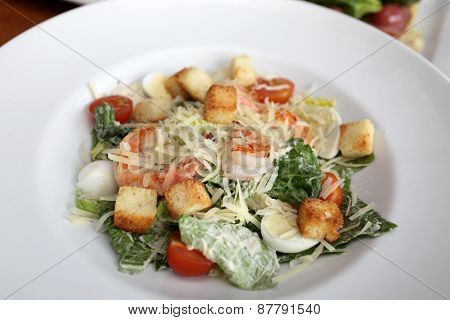 Plate With Caesar Salad
