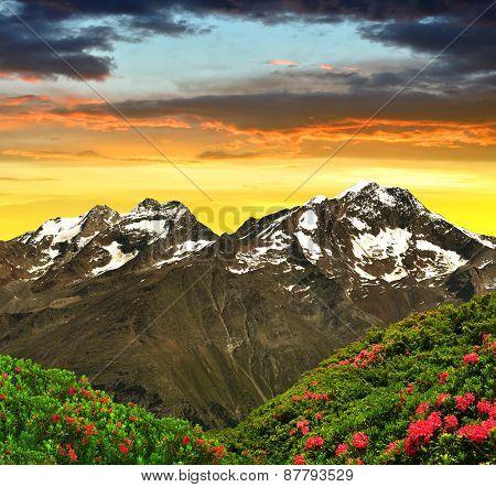 Weissmies, Lagginhorn and Fletschhorn at sunset  - Swiss Alps