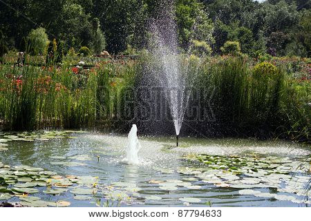 Beautiful Formal Garden With Fountain