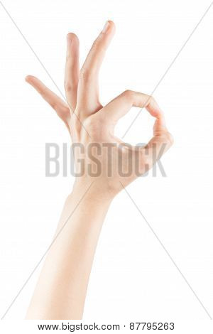 Female Hands Making Sign Ok