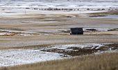 picture of prairie  - Prairie Landscape in winter Saskatchewan Canada scenic - JPG
