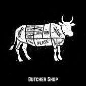 stock photo of beef shank  - Butcher shop cuts of beef  - JPG